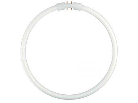 SIJALKA FLUO FC 40W 840 2GX13 T16 - R CIRCLINE EAN - 528526
